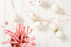 Peppermint chocolate cake pops Royalty Free Stock Photos