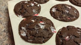 Peppermint Chocolate Cookies Royalty Free Stock Image