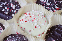 Peppermint Cookies Royalty Free Stock Photo