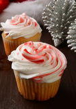 Peppermint Cupcakes Stock Image