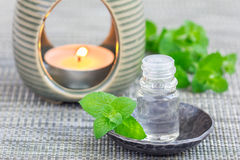 Peppermint essential oil in glass on gray mat with spa background Stock Images