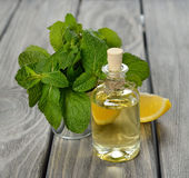 Peppermint essential oil Stock Photo