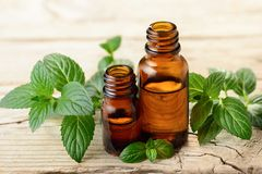 Peppermint essential oil and leaves on the wooden board. Fresh peppermint leaves and essential oil on the table Royalty Free Stock Photos