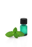 Peppermint Herb Essence Royalty Free Stock Photo