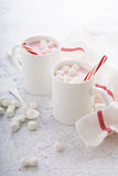 Peppermint hot chocolate with candy canes Stock Photos