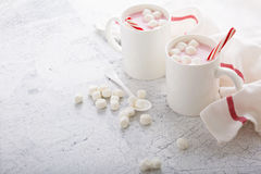 Peppermint hot chocolate with candy canes Royalty Free Stock Photo