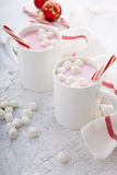 Peppermint hot chocolate with candy canes Royalty Free Stock Images