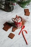 Peppermint Hot Chocolate and Cookies stock photos