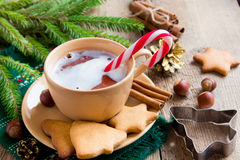 Peppermint hot chocolate with gingerbread cookies Stock Images