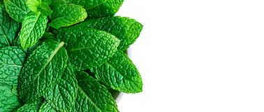 Peppermint Leaf Isolated On White Background. Heap Of Mint, Spearmint Leaves, Close Up. Top View Stock Photos