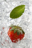 Peppermint leaf and strawberry Stock Photo