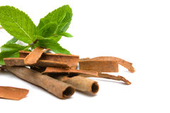 Peppermint (Mentha piperita) and cassia-bark  Royalty Free Stock Photo
