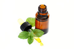 Peppermint oil Stock Photos