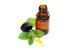 Peppermint oil Stock Photos