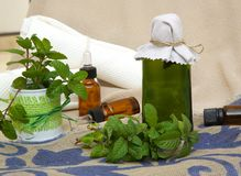 Peppermint oil. A glass bottle of peppermint oil. Peppermint leaves in the background stock image