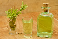 Peppermint plant, liqueur bottle and shot stock images