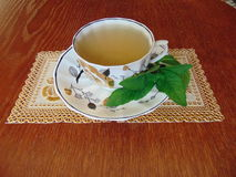 Peppermint tea in a Cup and saucer on the table Stock Photography