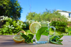 Peppermint tea with lemon Stock Images