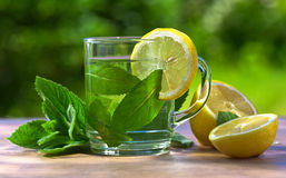 Peppermint tea with lemon Royalty Free Stock Photography