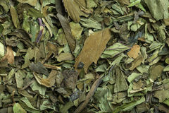 Peppermint tea in macro. Macro shot of dried peppermint tea Royalty Free Stock Photography