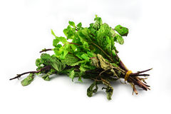 Peppermint vegetables dead Royalty Free Stock Photo