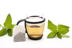 Free Peppermint With Tea Bag Royalty Free Stock Photos - 20518028