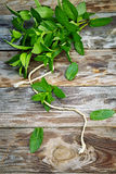 Peppermint on wooden table Stock Photography