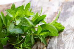 Peppermint on wooden table Stock Images