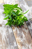 Peppermint on wooden table Royalty Free Stock Photos