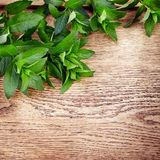 Peppermint on wooden table Royalty Free Stock Images