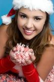 peppermints εκμετάλλευσης κορι& Στοκ εικόνα με δικαίωμα ελεύθερης χρήσης