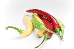 Pepperoni Royalty Free Stock Image