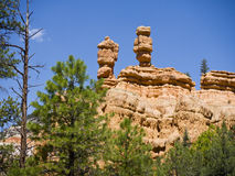Pepperpot Rocks in Red Canyon National Park, Utah, USA. Bryce Canyon is distinctive due to its geological structures, called hoodoos, formed from wind, water Royalty Free Stock Photos