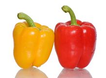 Peppers. Two peppers on a white background Royalty Free Stock Photography