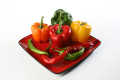Peppers. Plate Studio Red Green Yellow Orange Royalty Free Stock Images