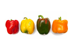 Peppers. Four colorful peppers isolated on white stock photography