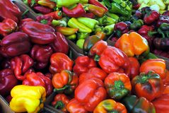 Peppers. A veriety of peppers at the farmers market Royalty Free Stock Images