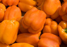 Peppers. Close up of freshly harvested orange peppers Stock Photo