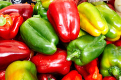 Peppers. Red, yellow and green peppers for sale in a vegetable market, Rome, Italy Stock Images
