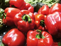 Peppers. Red peppers in the market, close up Royalty Free Stock Photography