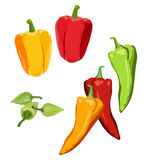 Peppers. Clip-arts of various peppers Royalty Free Stock Photography