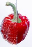Peppers with air bubbles Stock Images