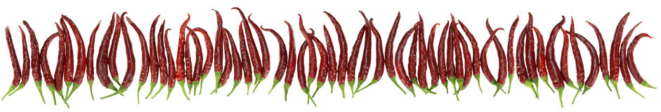 Peppers big border isolated Royalty Free Stock Images