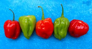 Peppers on Blue Stock Photo