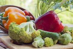 Peppers, brussels sprouts, cucumber and cabbage broccoli Stock Image