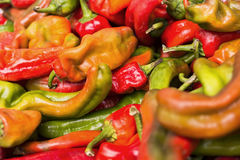 Peppers. Candy at the lokal market just out side of ceudad quesada spain stock images