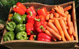 Peppers and Carrots. Royalty Free Stock Image