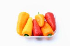 Peppers of colors with water drops Royalty Free Stock Photo