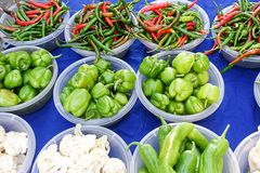 Peppers in different colors and kinds Stock Photography