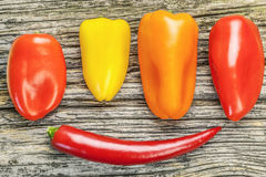 Peppers of different colors Stock Images